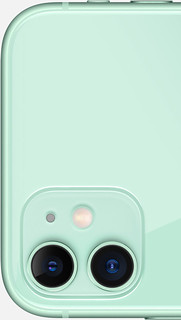 iPhone 11 in [Mint] Green