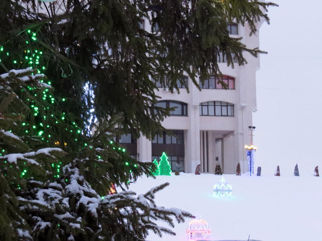 Новогодняя елка у Белого Дома