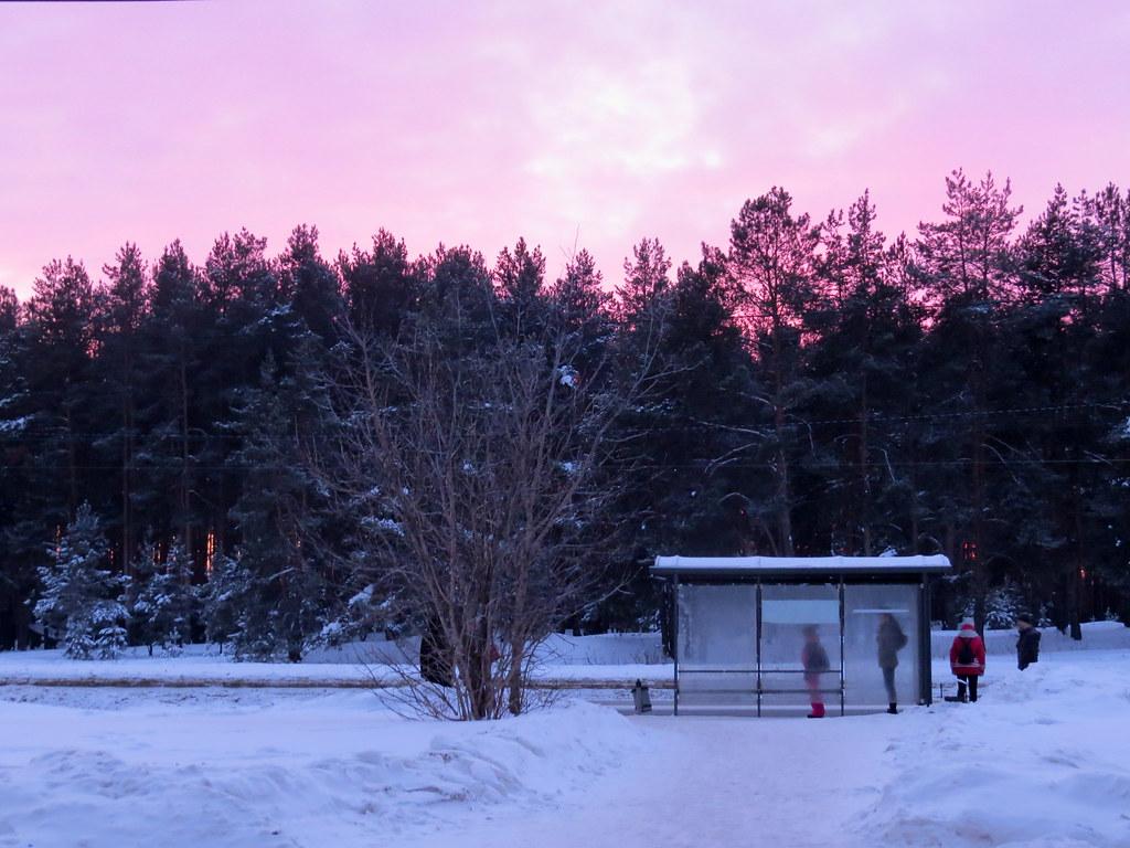 Розовый закат