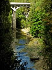 How Green is my Gorge. St David's Street Bridge