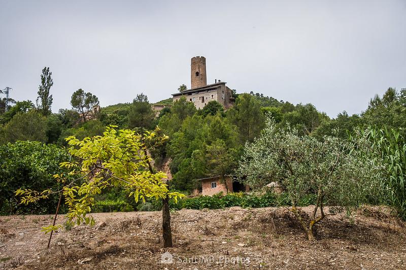 Horts de Can Serra bajo la Torre de Coaner