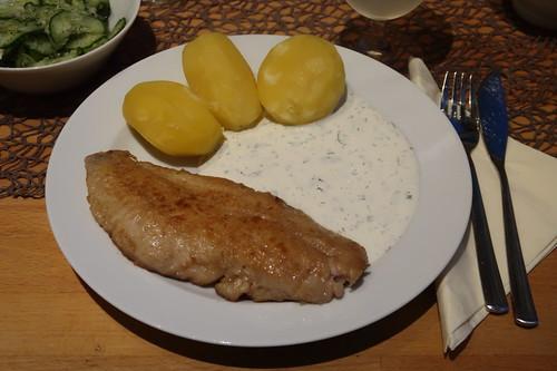 Rotbarsch-Filet mit Salzkartoffeln, Joghurt-Dip und Gurkensalat (mein Teller)