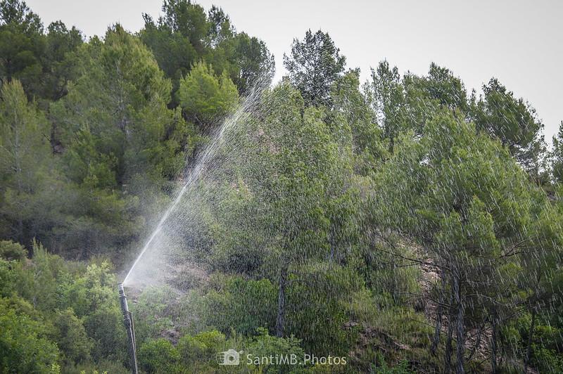 Aspersor en los Horts de Can Serra