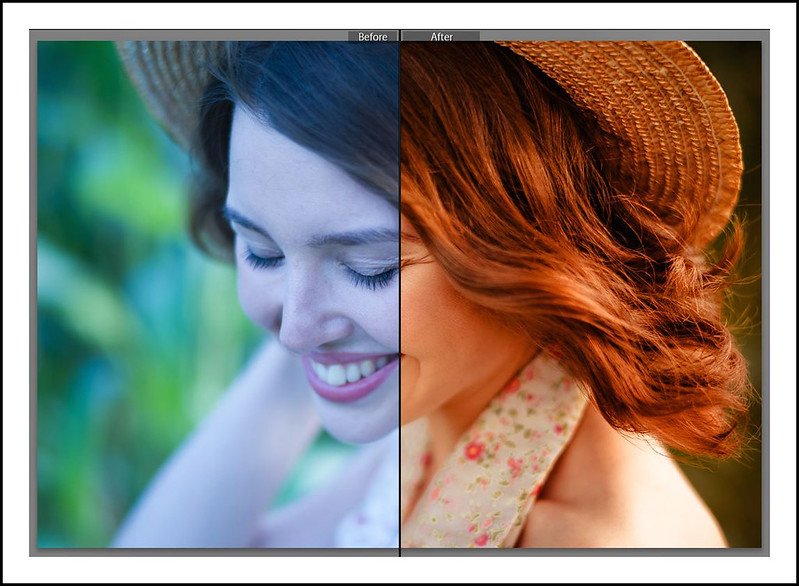 Free Leica Preset for Lightroom
