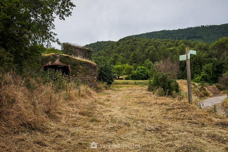 Camino a la vieja masía de la Ribera