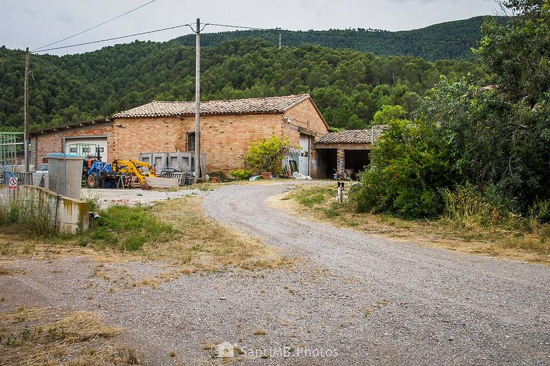 La Ribera en el Camí de Coaner