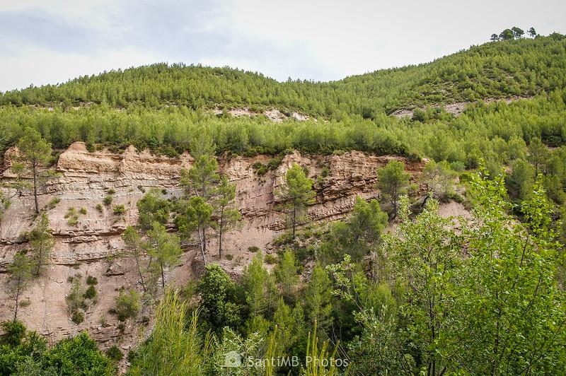 Estratos de roca cerca de la riera de Coaner