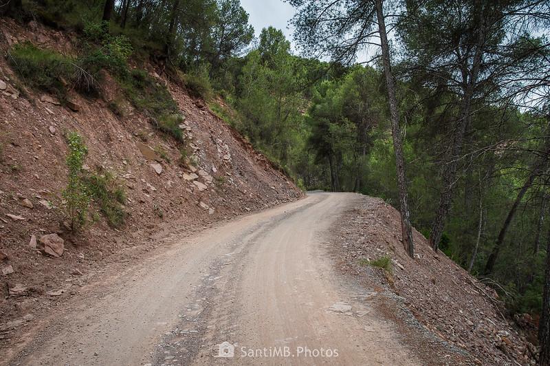 Camino de Coaner