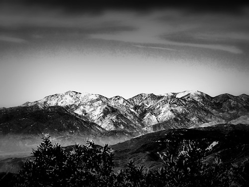 sanbernardinonationalforest kellerpeak arrowbear california sangabrielmountains blackandwhite selectivefocus landscape