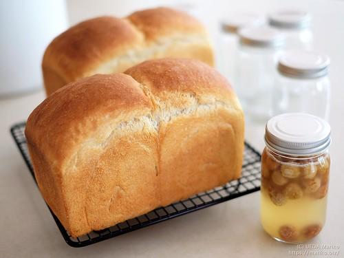 いちご酵母食パン と レーズン酵母 20190927-DSCT7953 (3)