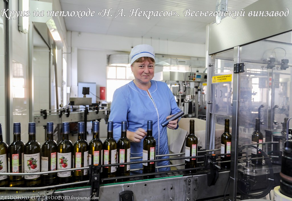 Круиз на теплоходе «Н. А. Некрасов». Весьегонский винзавод