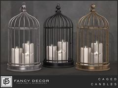 Caged Candles @ Salem