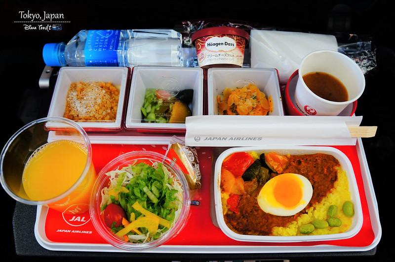 2019 JAL Tokyo to KL