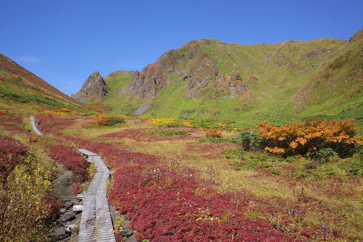 秋の秋田駒ヶ岳 紅葉のムーミン谷