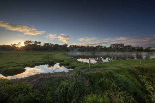 farm sunrise australia westernaustralia spring dairy