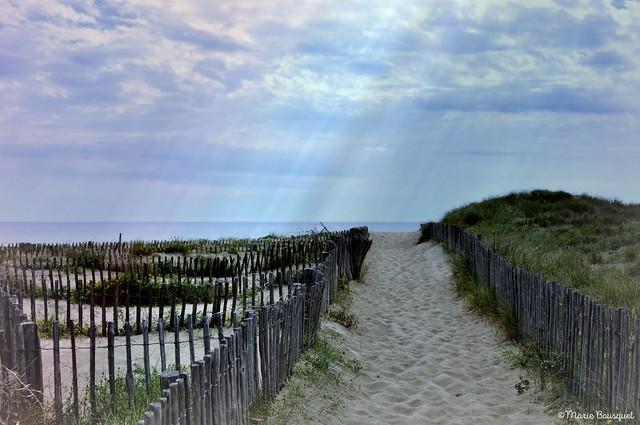 Espace naturel protégé des dunes