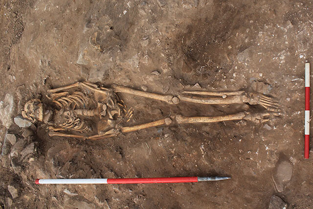Well preserved skeleton in the ground. This is from the site of Lindisfarne