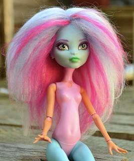 Custom Monster High Acrylic Yarn Wig