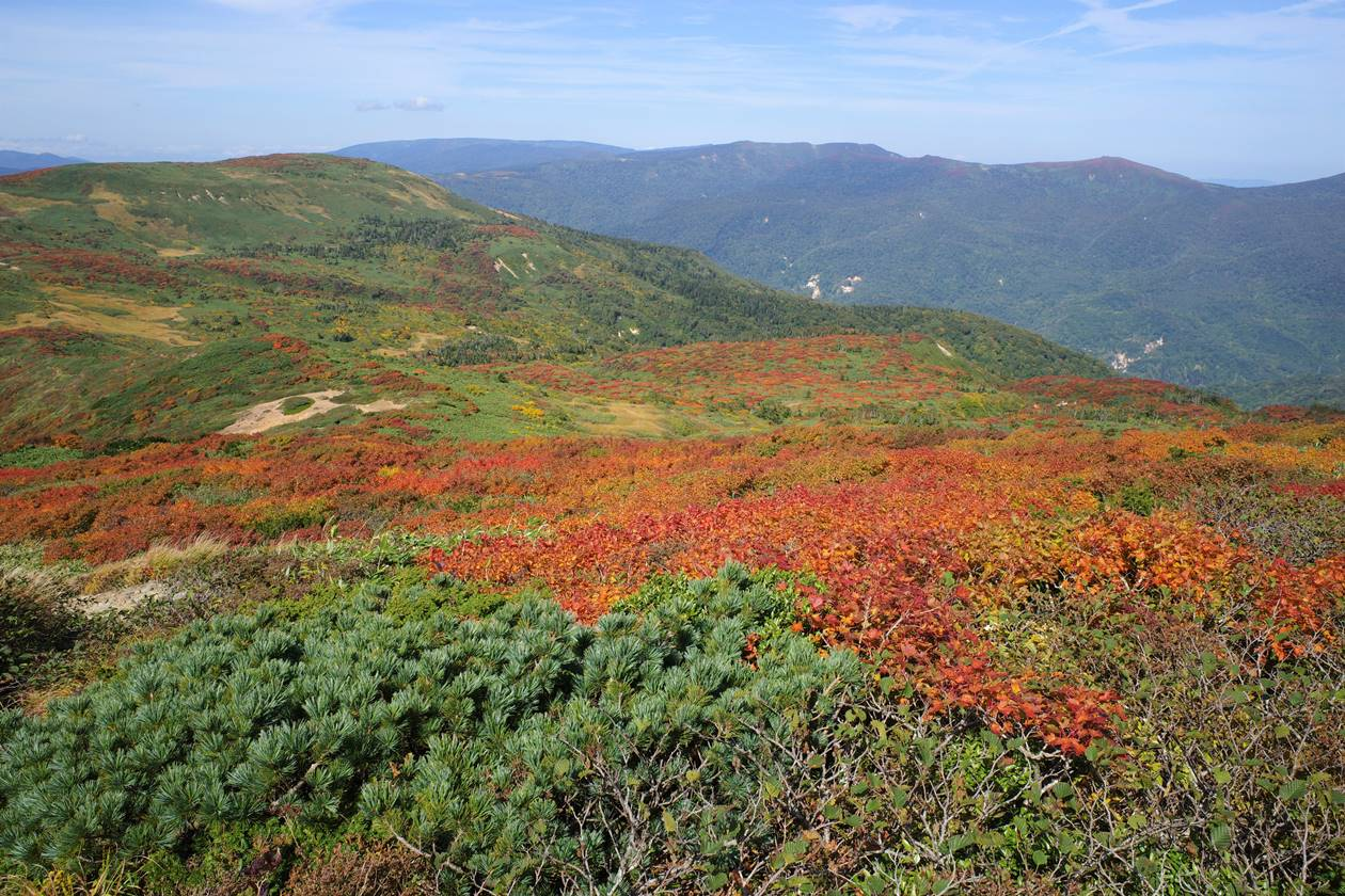 乳頭山の紅葉風景