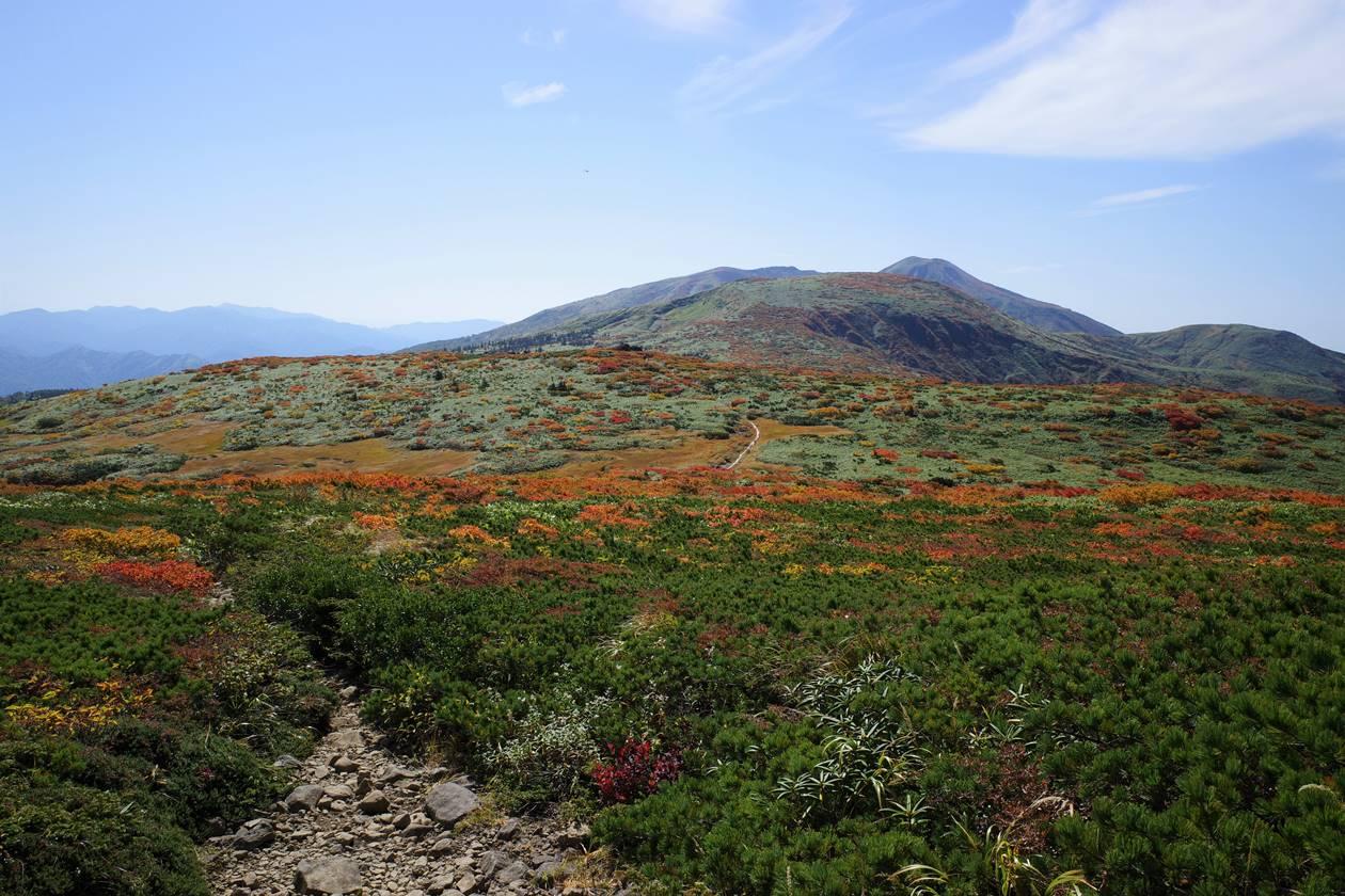 秋田駒ヶ岳~乳頭山縦走登山 笊森山から眺める紅葉風景