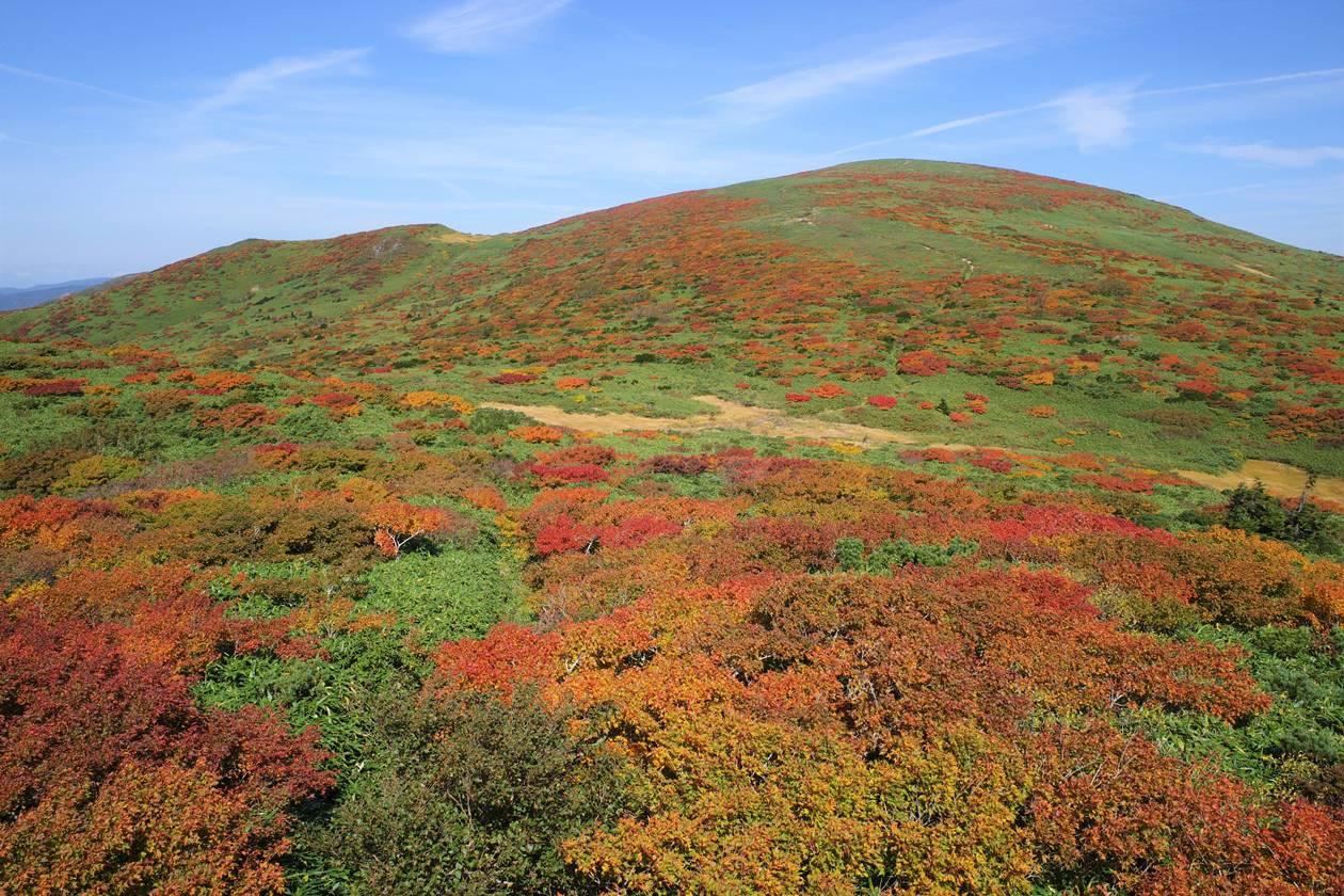 秋田駒ヶ岳~乳頭山縦走登山 紅葉の笊森山