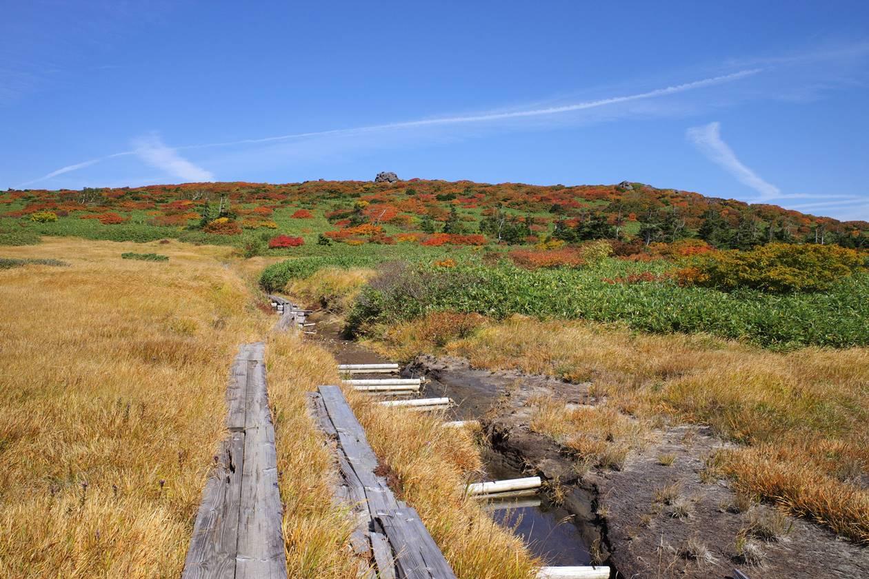 秋田駒ヶ岳~乳頭山 熊見平の木道と紅葉風景