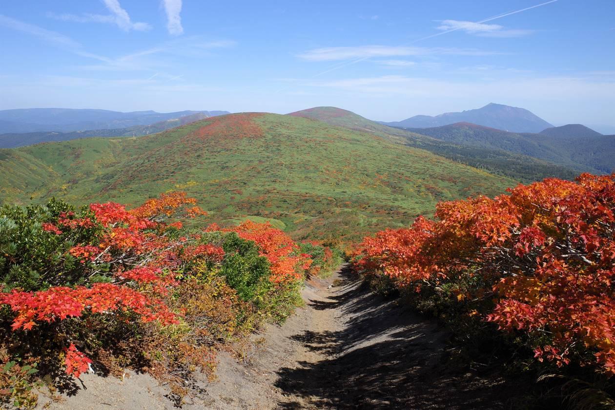 秋田駒ヶ岳 焼森から湯森山へ紅葉の縦走路