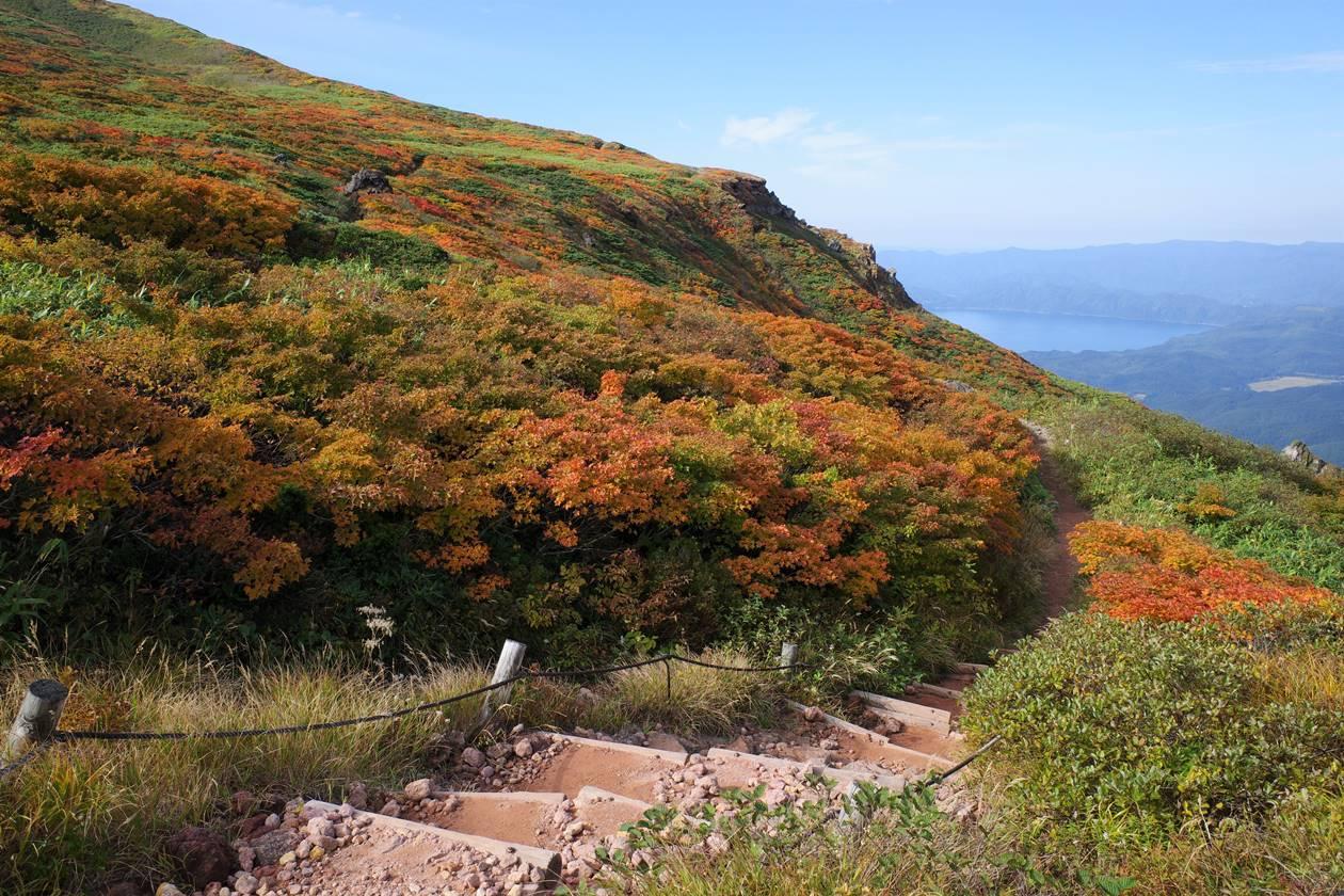 秋田駒ヶ岳 紅葉の登山道