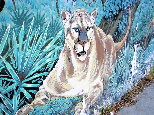 Panther art 206