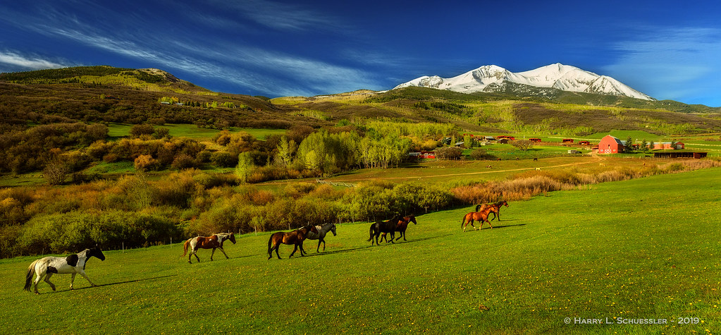 Early Morning - Basalt CO Horse Ranch