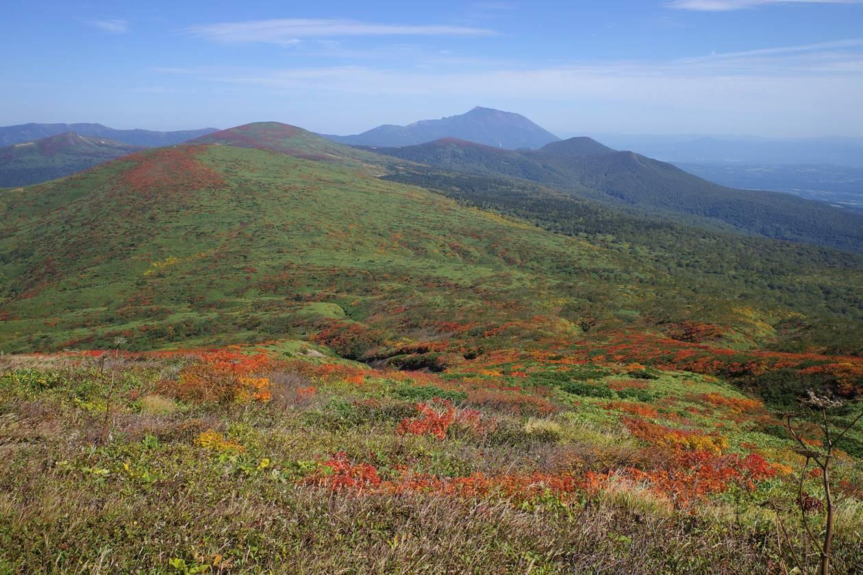 紅葉の秋田駒ヶ岳 焼森から眺める乳頭山方面の縦走路
