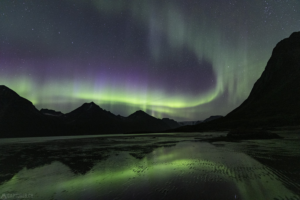 Northern light in the fjord - Tasermuit