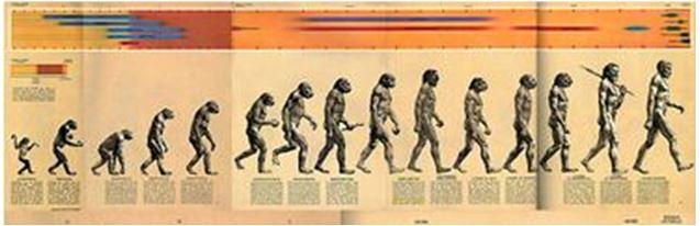 rappresentazione completa dell'evoluzione