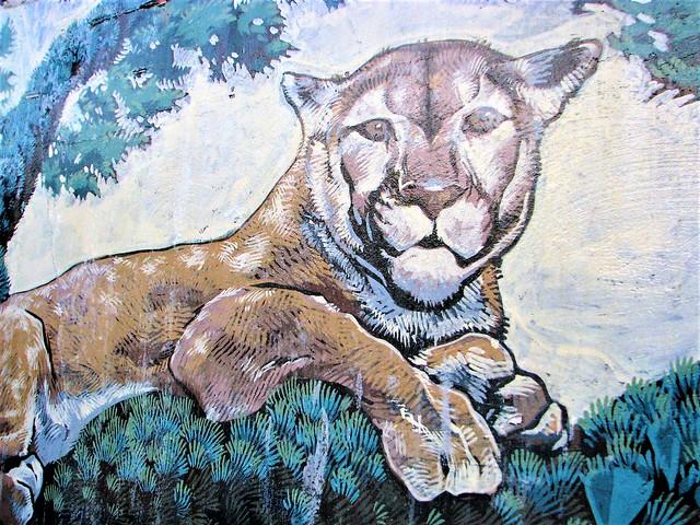 Panther art 207