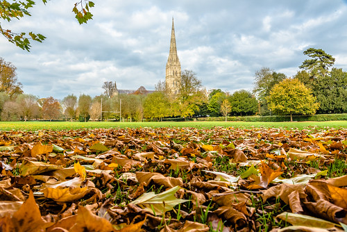 autumn church anglican churchofengland england sky leaves salisbury wiltshire salisburycathedral playingfields 英国 dioceseofsalisbury southwilts 索尔兹伯里 cathedral christian christianity 大教堂 坐堂 教堂 教会 座堂 索尔茲伯里大教堂 索尔茲伯里座堂 英格兰 威尔特郡