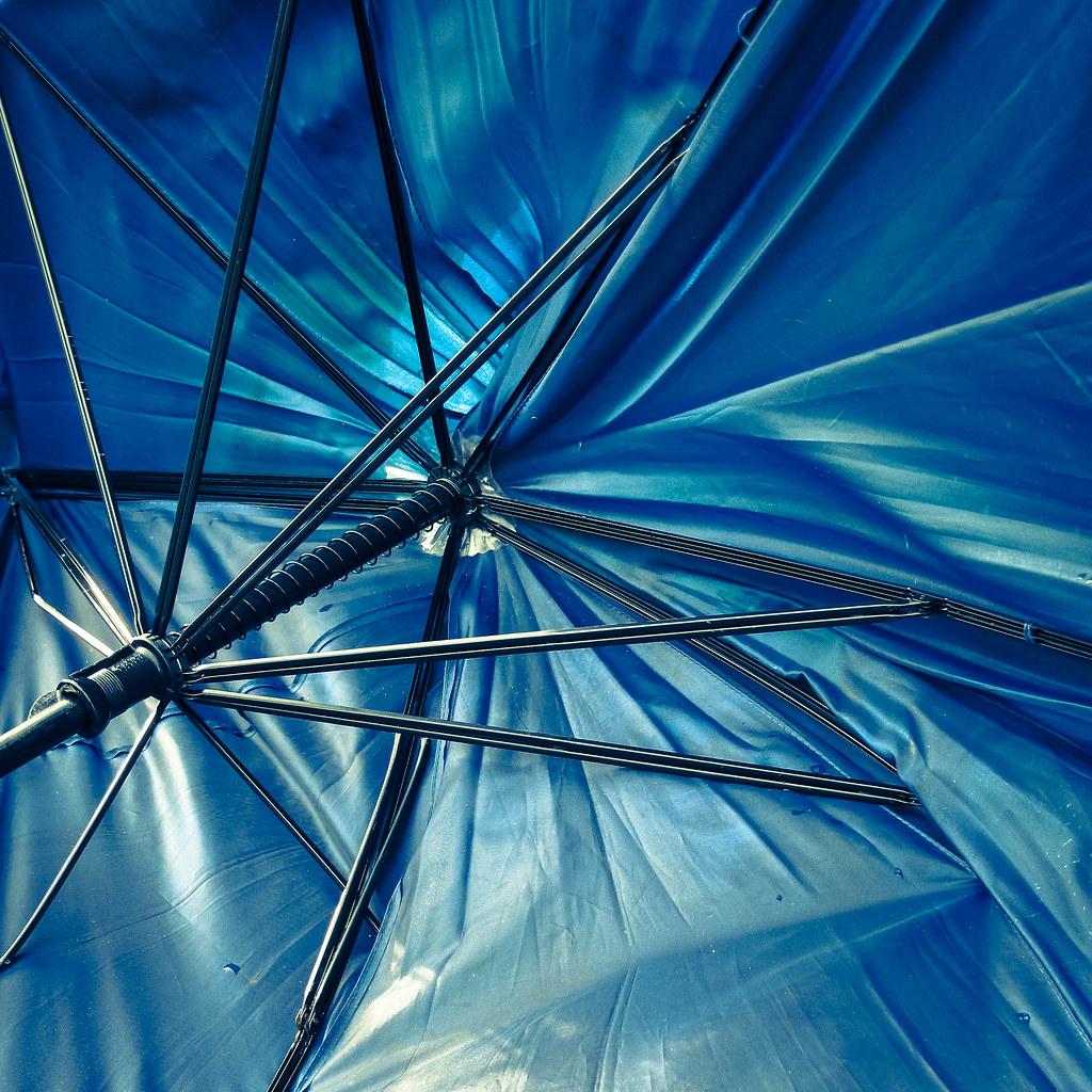 Discarded, Broken Umbrella