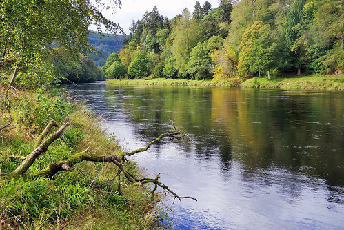 ericrobbniven scotland dunkeld rivertay landscape reflections springwatch