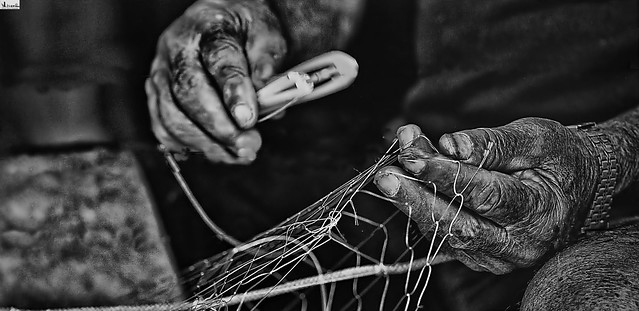 Manos de pescador- Fisherman's hands