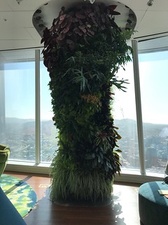 Salesforce Tower Tour