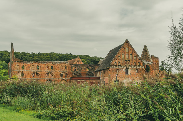 Zisterzienser Kloster Doberan - 5286