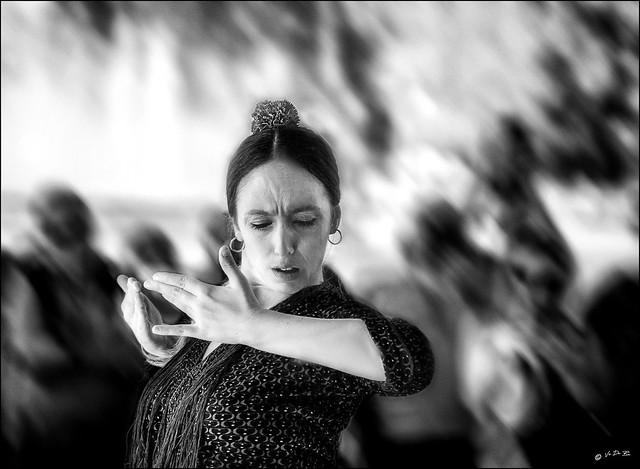Vivre le Flamenco!  /  Live flamenco dance!