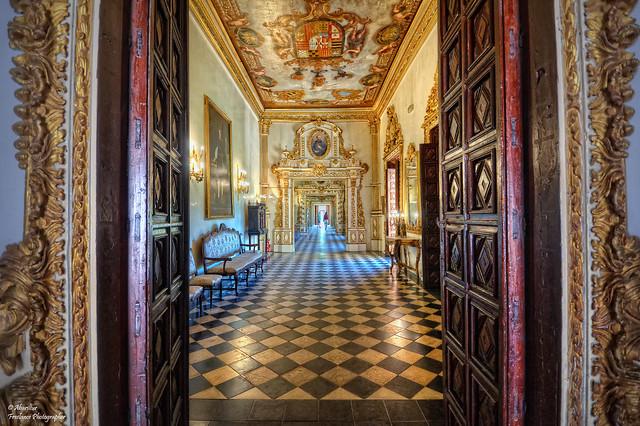 Porta d'entrada a la Galeria Daurada del Palau Ducal de Gandia (Els Borja) (Explore Sep 29, 2019 #81)