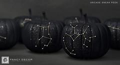 Zodiac Pumpkins @ Arcade