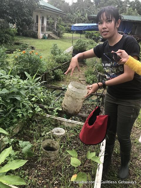 sanctuario-organic-farm-indang-cavite.jpg