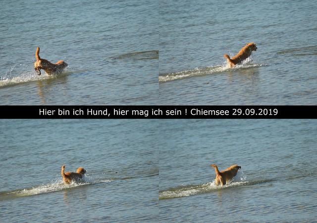 Badespaß Chiemsee 001