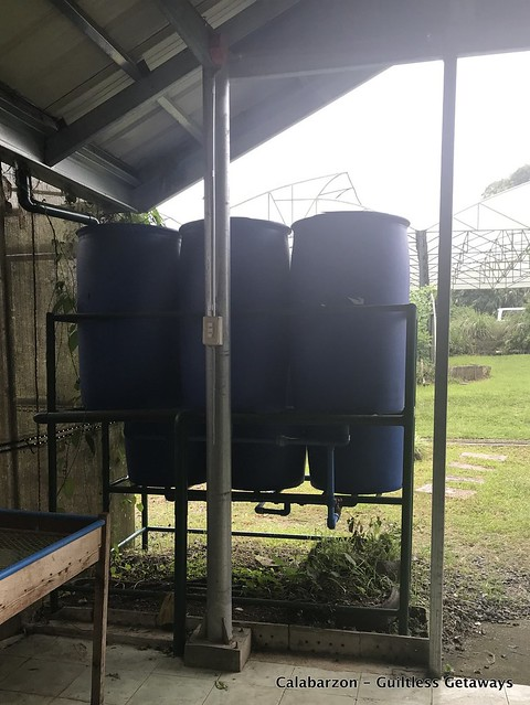 rainwater-harvesting-sanctuario-organic-farm-indang-cavite.jpg