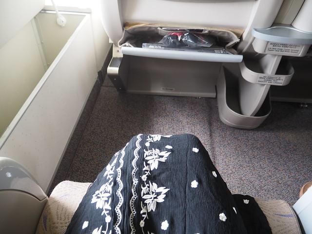 P9154868 Asiana アシアナ航空 ビジネスクラス business class シンガポール Singapore ひめごと