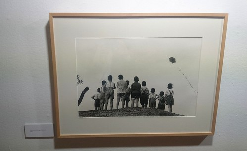 Os rapaces de Sant Boi de Llobregat - Copyright Ricard Terré