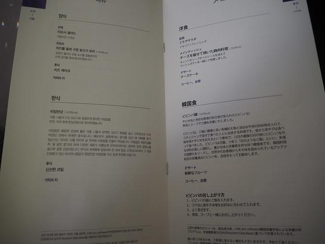P9154871 Asiana アシアナ航空 ビジネスクラス business class シンガポール Singapore ひめごと