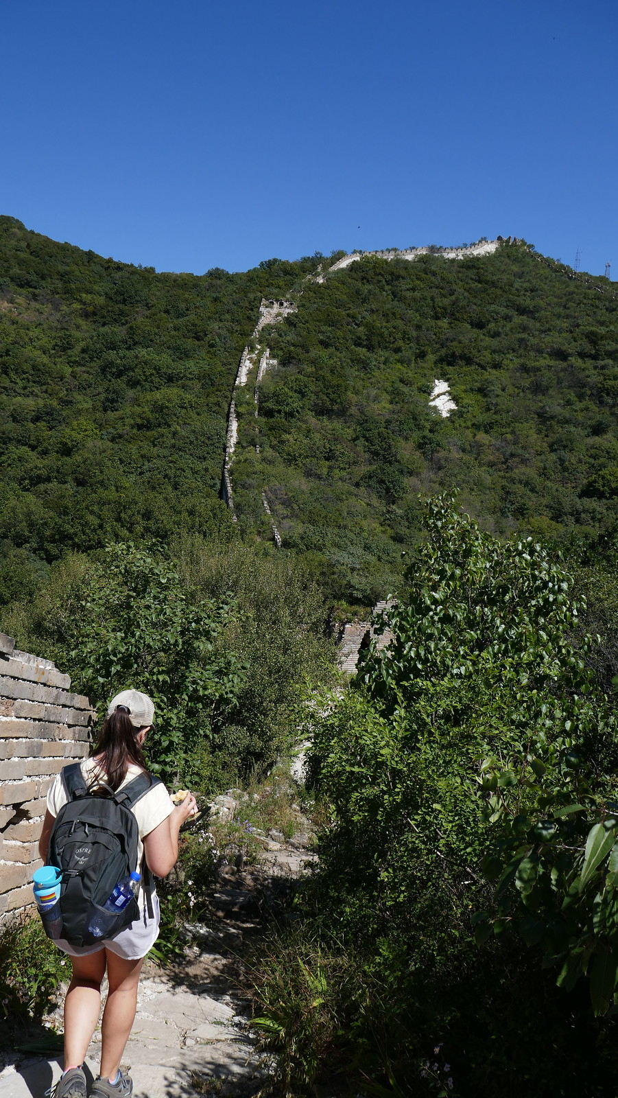 La Gran Muralla totalmente inmersa en la naturaleza